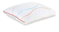 Energy-Pillow_2.jpg